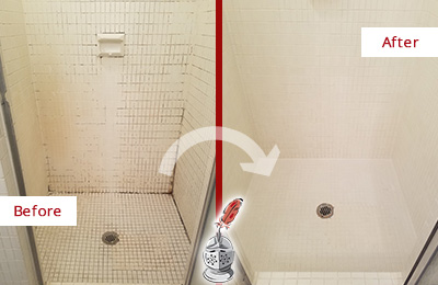 Before and After Picture of a Lutz Bathroom Grout Sealed to Remove Mold