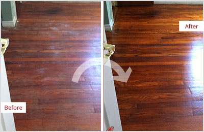 Sir Grout Tampa Deep Wood Cleaning